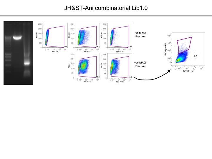 JH&ST-Ani combinatorial Lib1.0