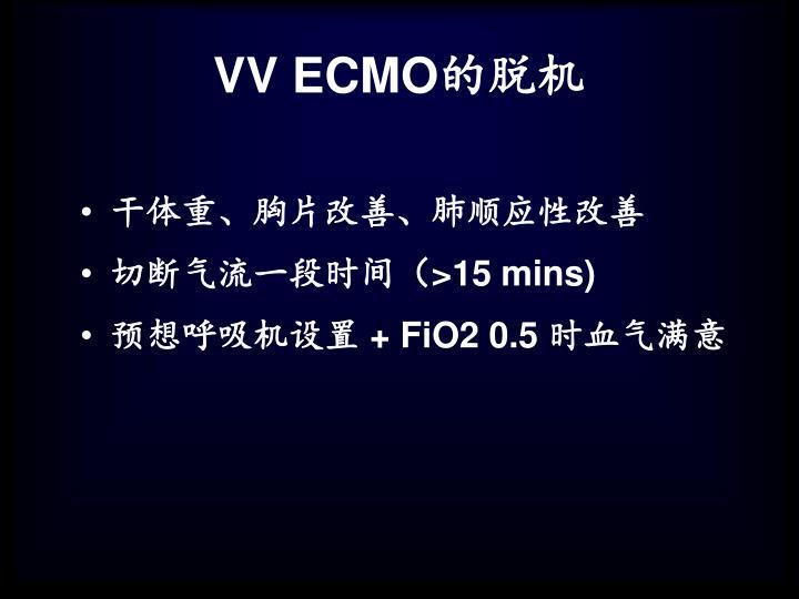 VV ECMO