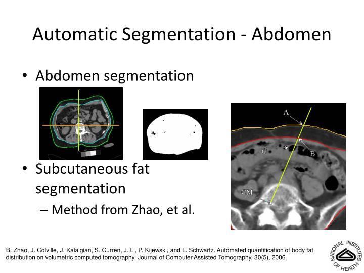 Automatic Segmentation - Abdomen