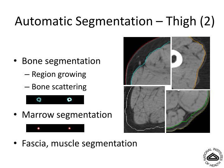 Automatic Segmentation – Thigh (2)