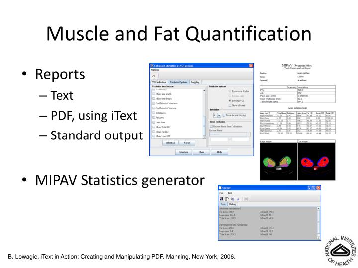 Muscle and Fat Quantification