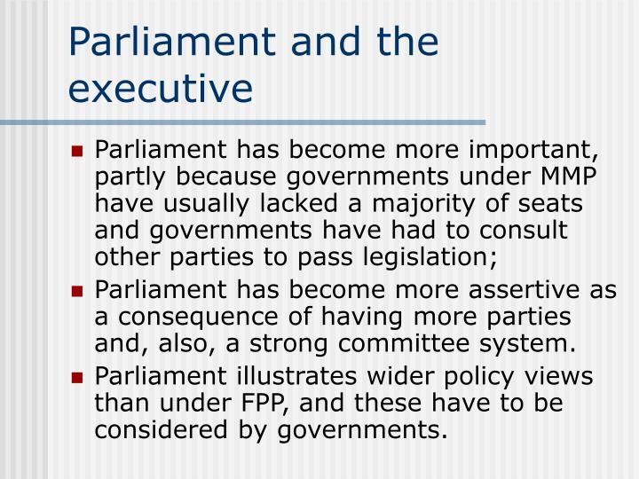 Parliament and the executive
