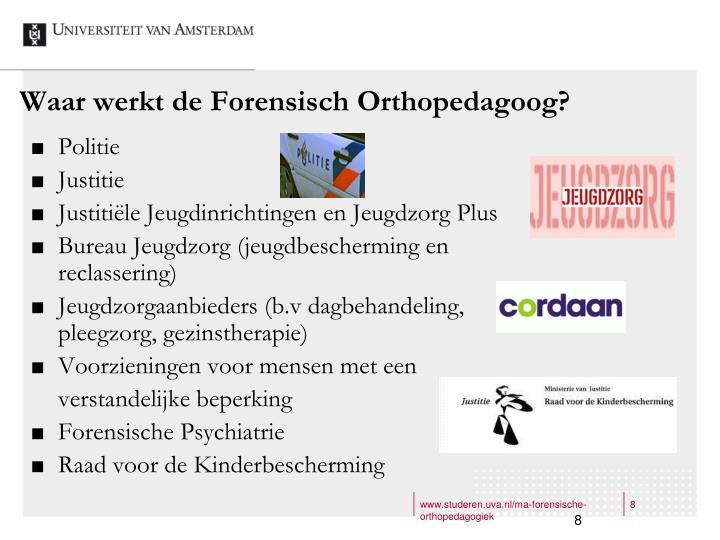 Waar werkt de Forensisch Orthopedagoog?