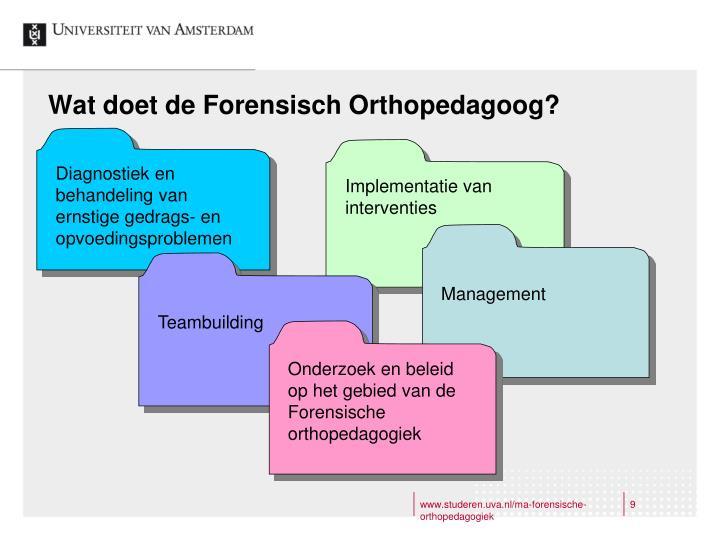 Wat doet de Forensisch Orthopedagoog?