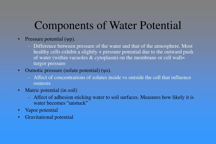 Components of Water Potential