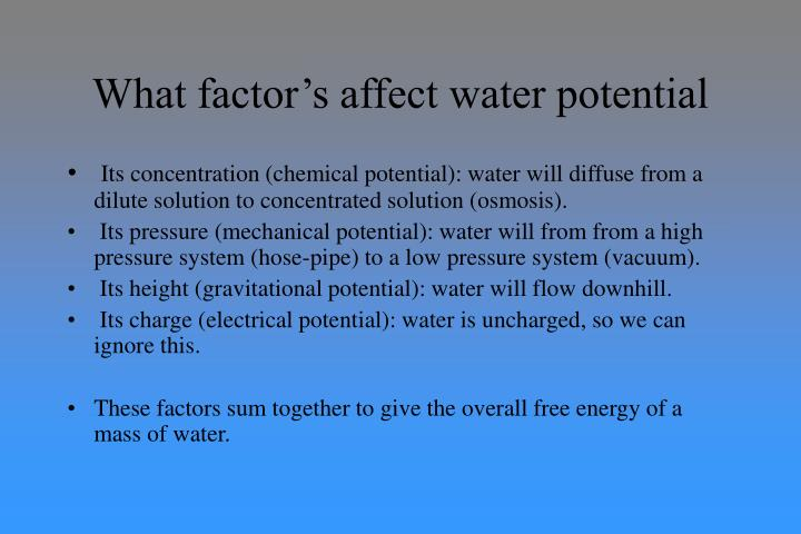 What factor's affect water potential