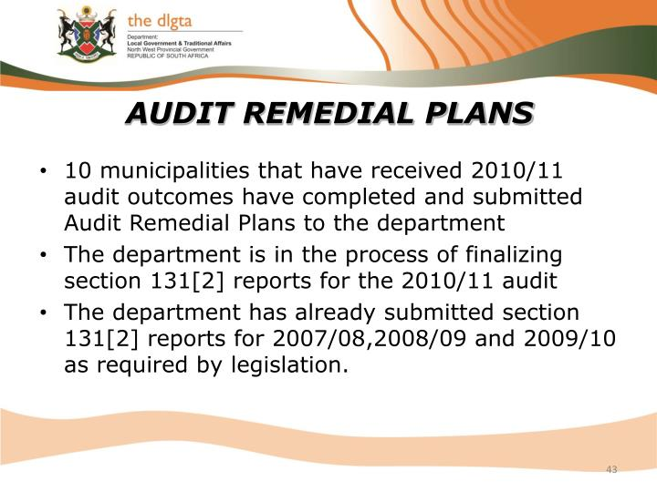 AUDIT REMEDIAL PLANS