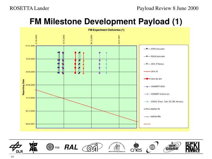 FM Milestone Development Payload (1)