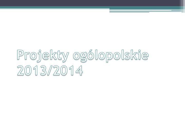 Projekty ogólopolskie 2013/2014