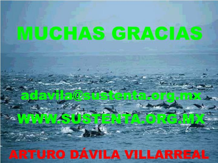 adavila@sustenta.org.mx