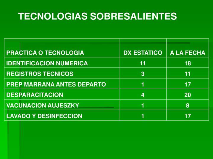TECNOLOGIAS SOBRESALIENTES