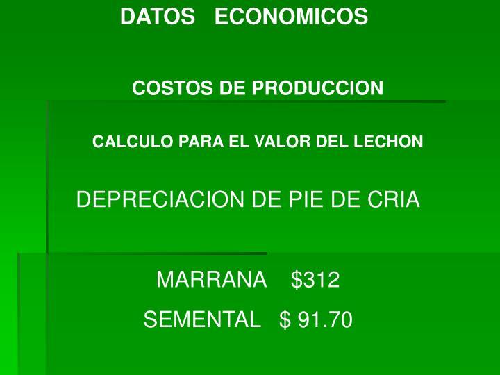 DATOS   ECONOMICOS