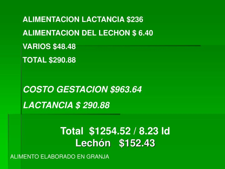 ALIMENTACION LACTANCIA $236