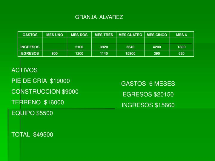 GRANJA  ALVAREZ