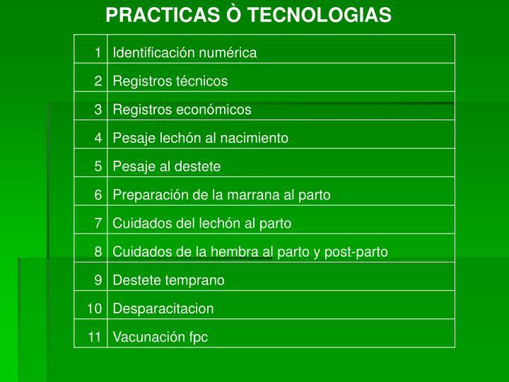 PRACTICAS Ò TECNOLOGIAS