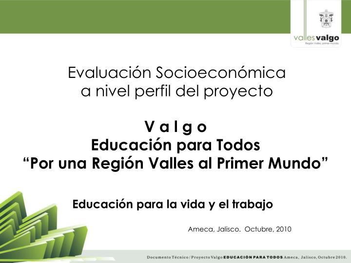 Evaluación Socioeconómica a nivel perfil del proyecto