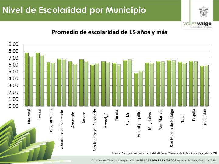 Nivel de Escolaridad por Municipio