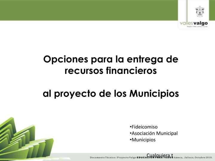 Opciones para la entrega de recursos financieros