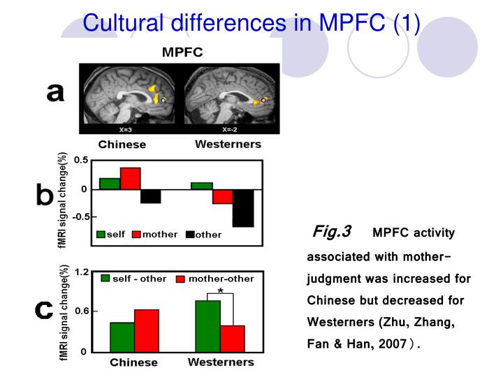 Cultural differences in MPFC (1)
