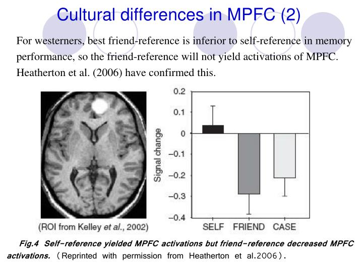 Cultural differences in MPFC (2)
