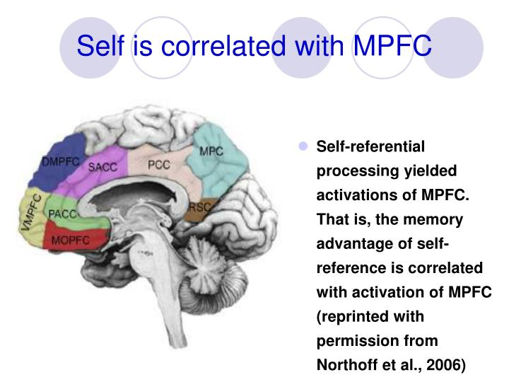 Self is correlated with MPFC