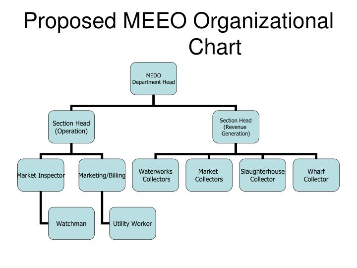 Proposed MEEO Organizational