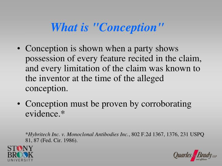 "What is ""Conception"""