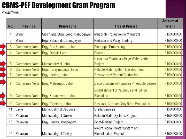 CBMS-PEF Development Grant Program