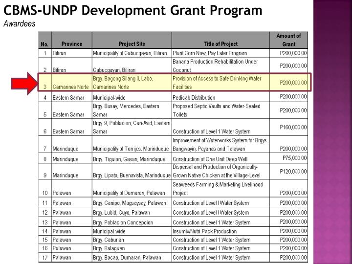 CBMS-UNDP Development Grant Program