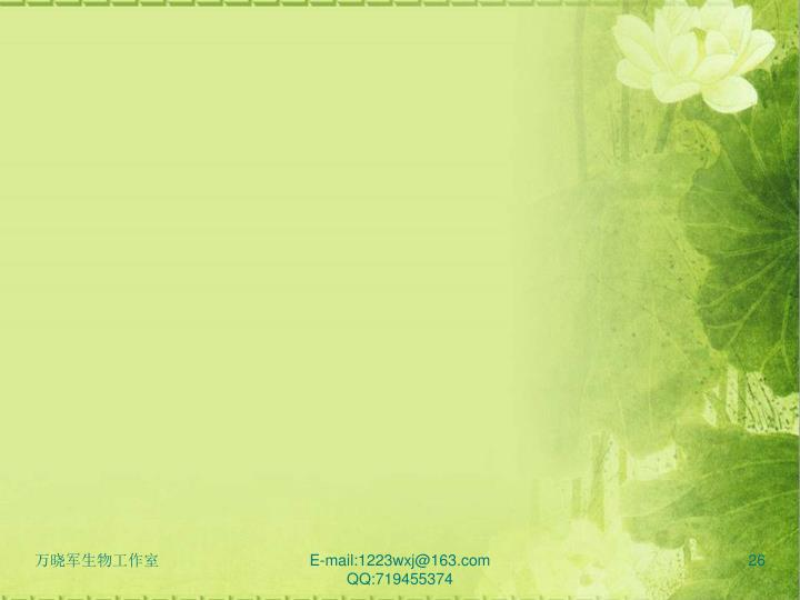 E-mail:1223wxj@163.com QQ:719455374