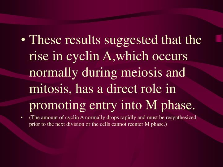 These results suggested that the rise in cyclin A,which occurs normally during meiosis and mitosis, has a direct role in promoting entry into M phase.
