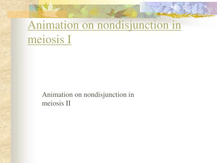 Animation on nondisjunction in meiosis I