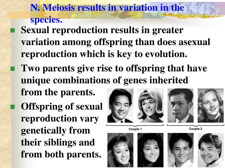 N. Meiosis results in variation in the species.