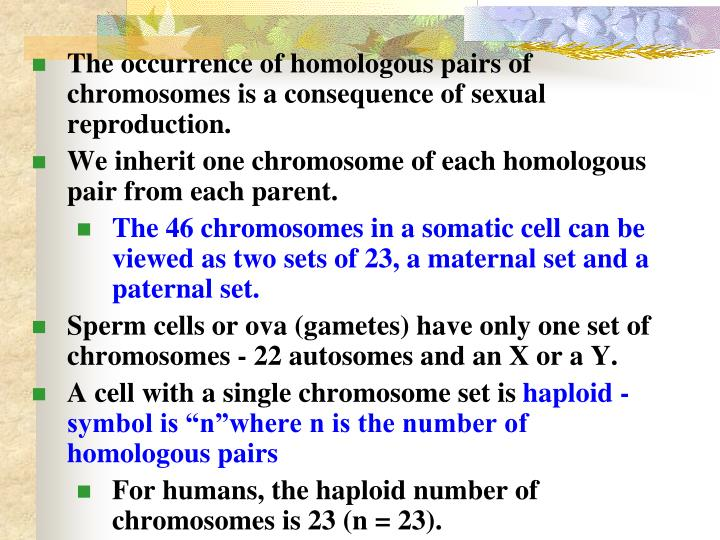 The occurrence of homologous pairs of chromosomes is a consequence of sexual reproduction.