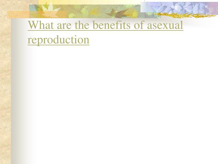 What are the benefits of asexual reproduction
