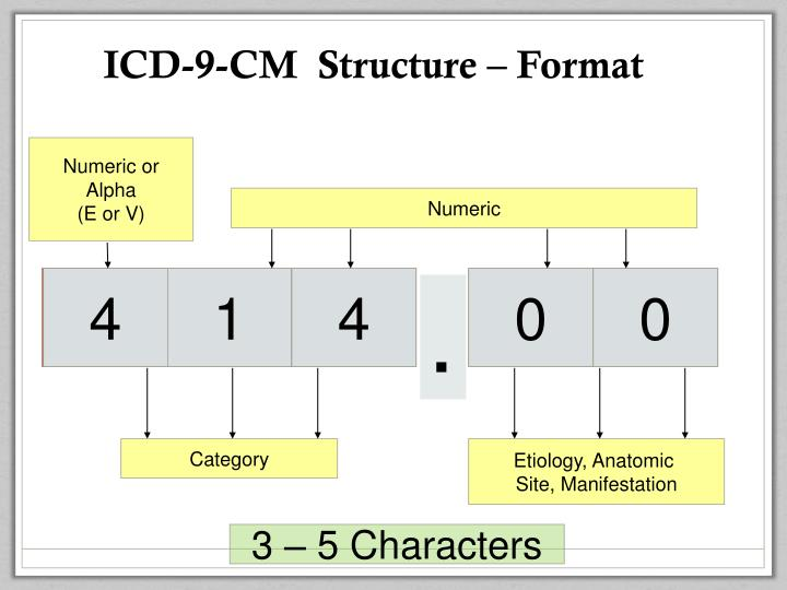 ICD-9-CM  Structure – Format