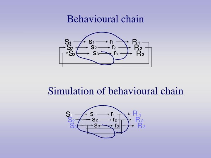 Behavioural chain
