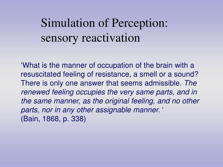 Simulation of Perception: