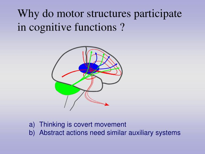 Why do motor structures participate in cognitive functions ?