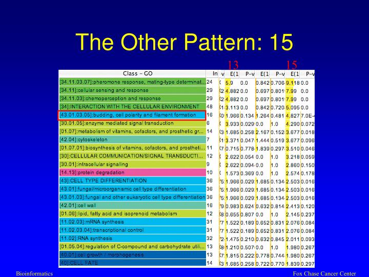 The Other Pattern: 15