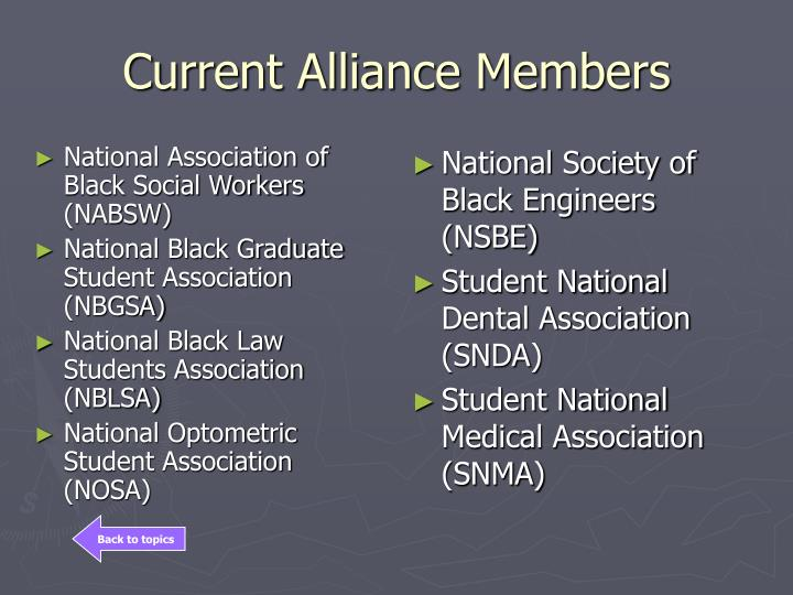 National Association of Black Social Workers (NABSW)