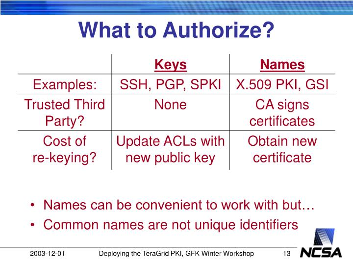 What to Authorize?