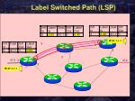 label switched path lsp