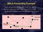mpls forwarding example3