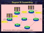 regular ip forwarding