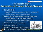 animal health prevention of foreign animal diseases