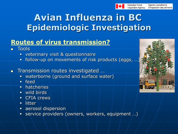 Avian Influenza in BC