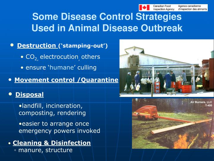 Some Disease Control Strategies