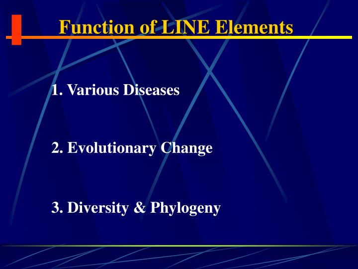 Function of LINE Elements