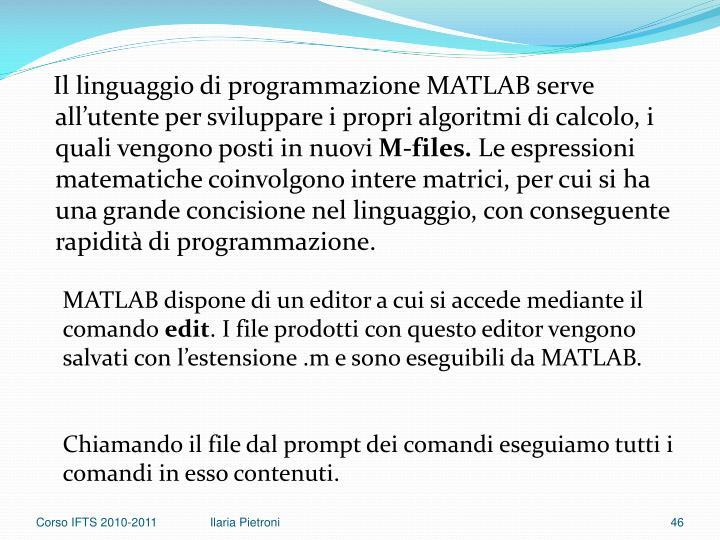 Il linguaggio di programmazione MATLAB serve all'utente per sviluppare i propri algoritmi di calcolo, i quali vengono posti in nuovi